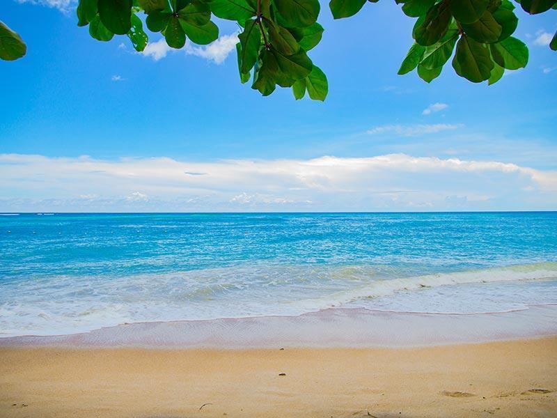Condos on Seven Mile Beach