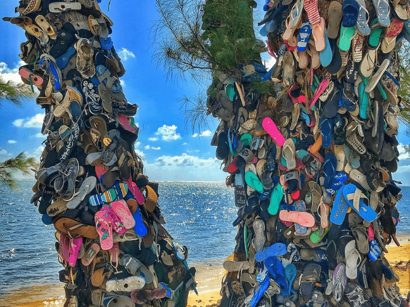 Shoe Tree in South Sound sparks Debate