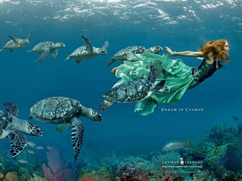 Cayman Tourism Reaches New Heights
