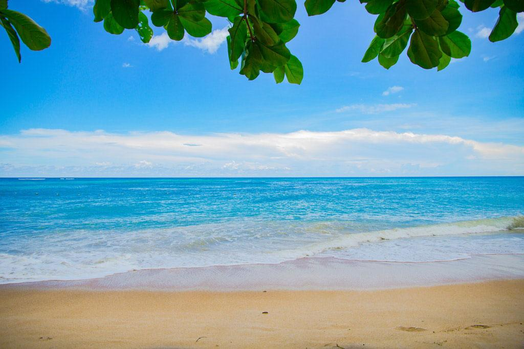 Everything You Need to Know About Seven Mile Beach