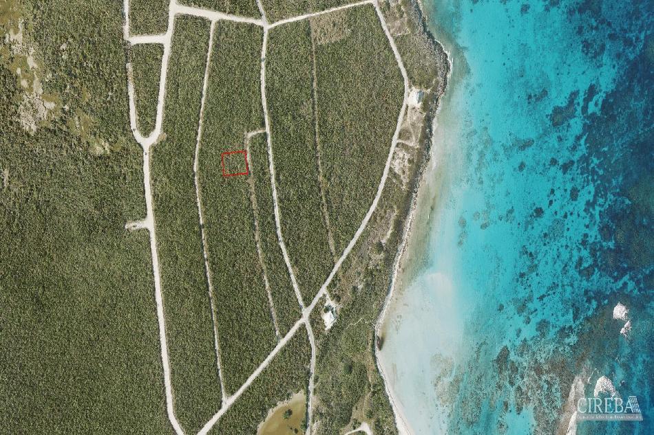 Little cayman near point of sand beach