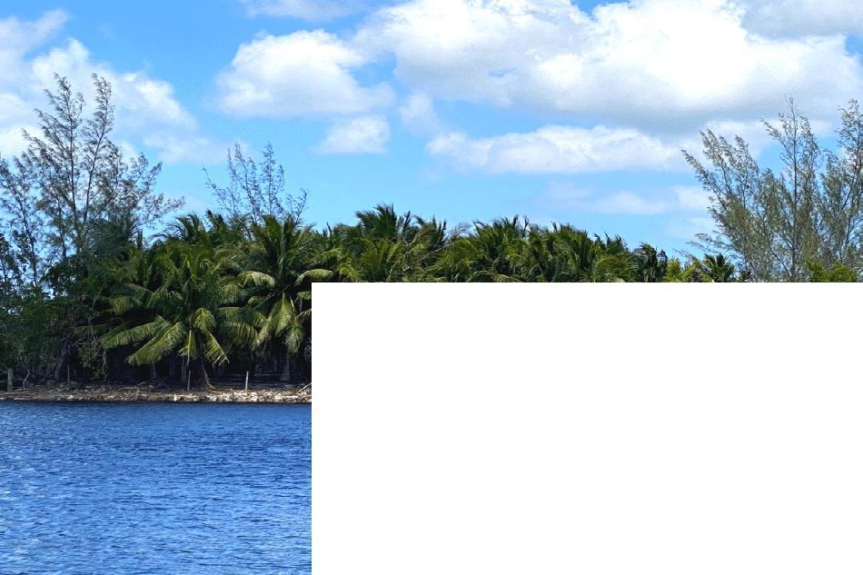 Palm island pennisula – mastic drive