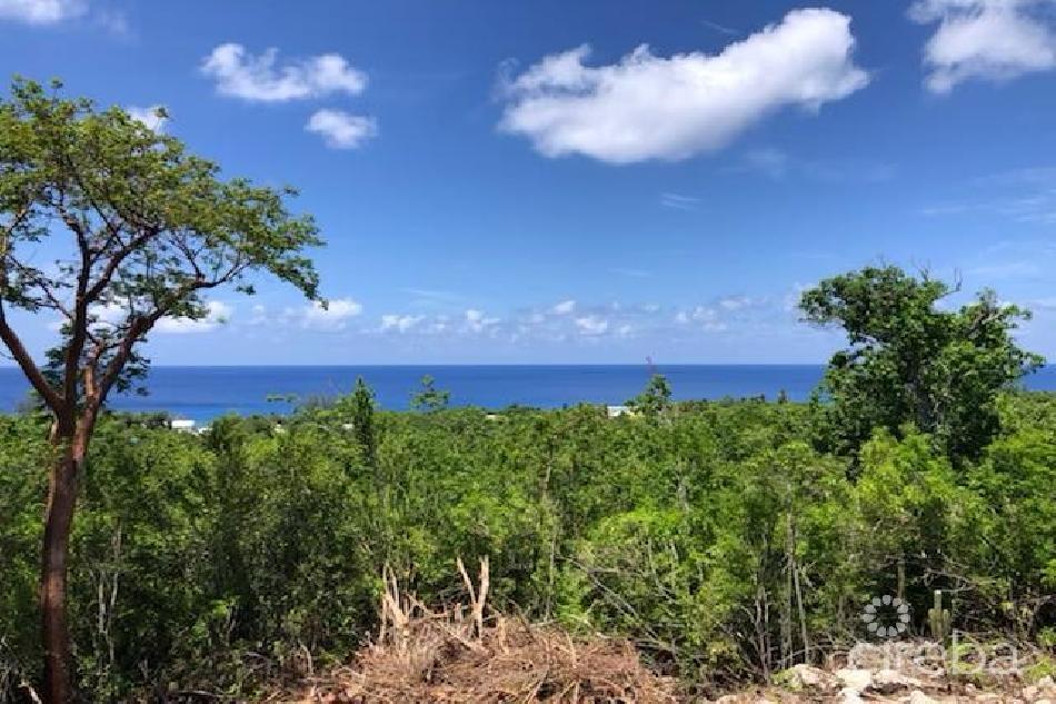 Cayman brac bluff edge w/ water views – no stamp duty