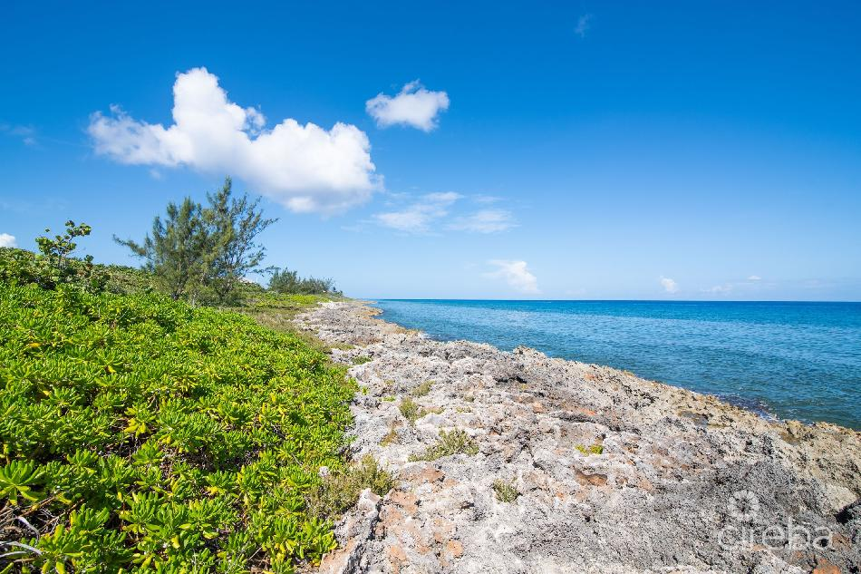Desireable oceanfront development land
